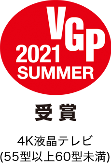 VGP2021SUMMER受賞